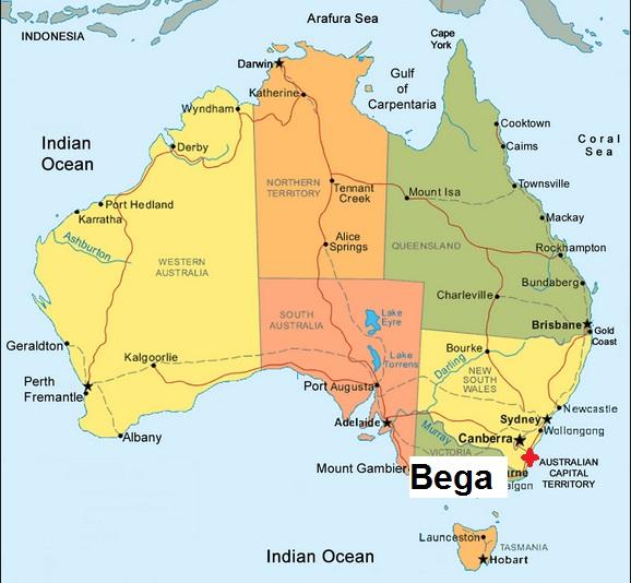 kangaroo information